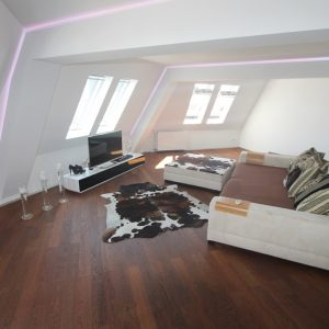 luxurioeses penthouse in mitte